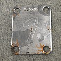 1973 Neck Plate