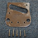 Pickup and Bridge Plate with Screws