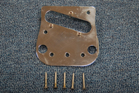 Pickup and Bridge Plate with Screws  -  Cat No:   -  Click To Order  -  ID: 1533